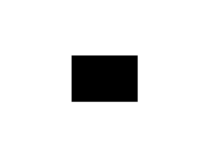 FESTA DEL PAPA' 2021